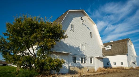 Schmitz Barn near Moose Jaw