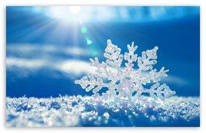 snowflake-t2_jpg_300x300_q85