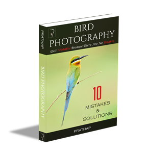 Free-eBook-Bird-Photography-Tips-for-Beginners-10-Mistakes-And-Solutions-by-Prathap-300px
