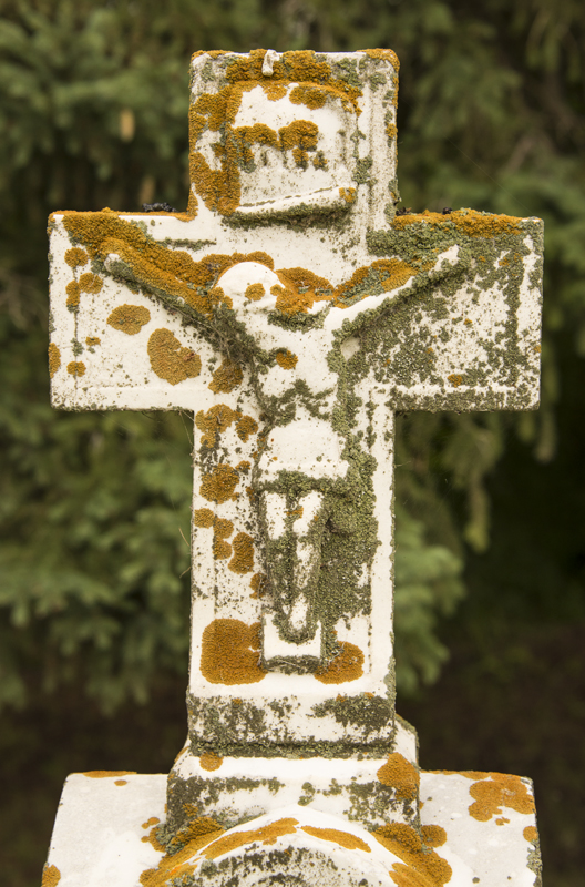 lichen encrusted cross